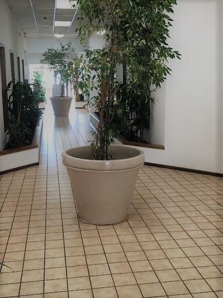 Foyer Pic 2